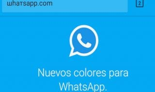 WhatsApp-com-falso