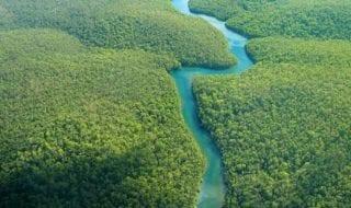 ríos-oceanos